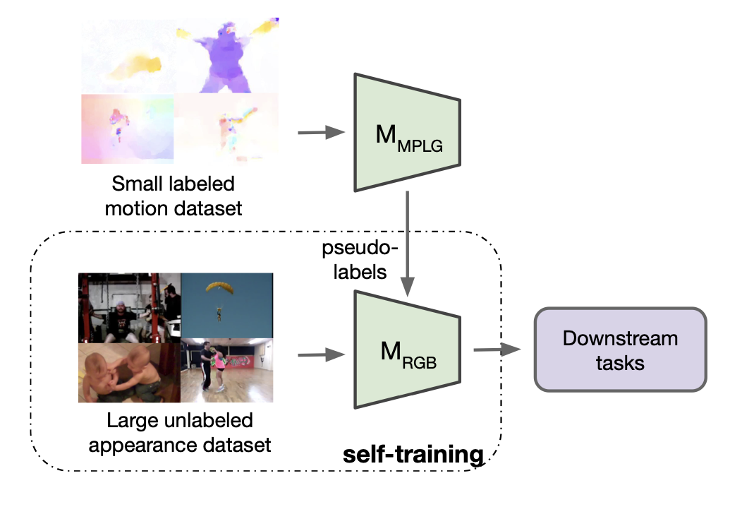 Motion-Augmented Self-Training for Video Recognition at Smaller Scale